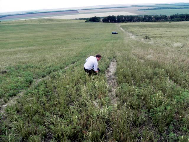 Проявление эрозии по следу прохода сельскохозяйственной техники