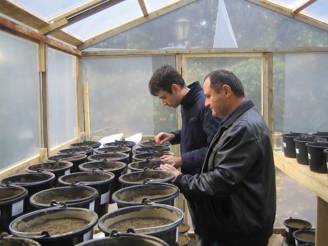 Агрохимики отдела применения удобрений и опытов Давыдов В.Е. и Матвиенко А.В. проводят подготовку почвы к посеву сельскохозяйственных культур