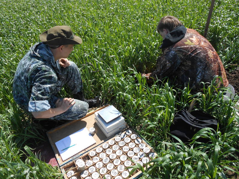 Определение плотности почвы. Специалисты Фуфлев С.В. и Сторчак Е.А.