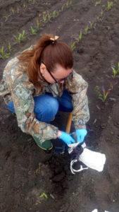 Отбор растительных проб осуществляет агрохимик 1 категории Яговитова Е.А.