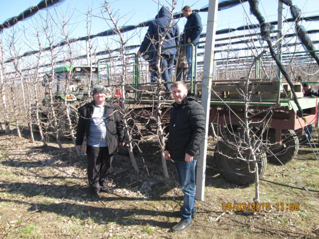 Главные специалисты отдела мониторинга почв Чернов В.А. и Макоед А.А. в саду шпалерного типа