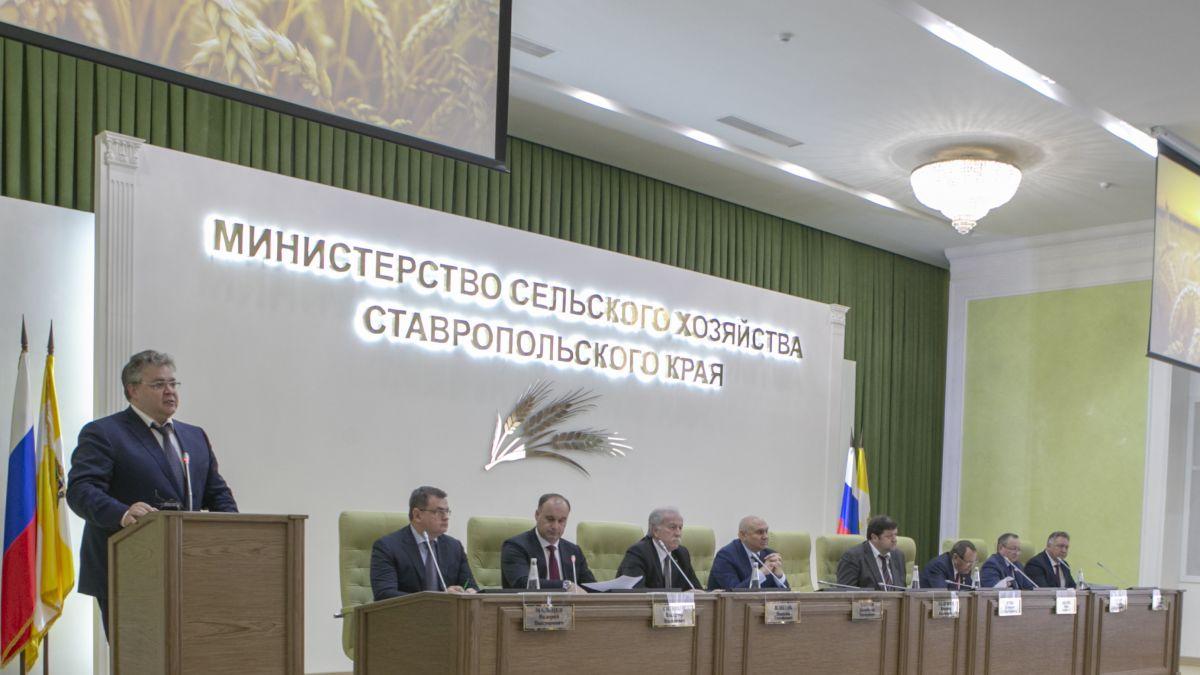 Президиум во главе с губернатором Ставропольского края Владимировым В.В.
