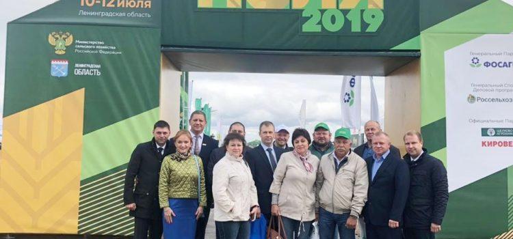 Фото. Всероссийский день поля 2019