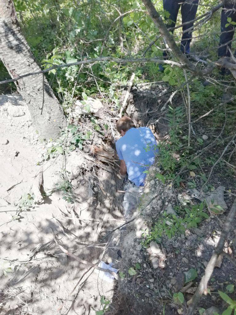 Главный почвовед Чернов В.А. проводит осмотр почвенного профиля