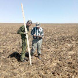 Производственный опыт по гипсованию почв в ООО «Агрокомпания «Руно» Кочубеевского района