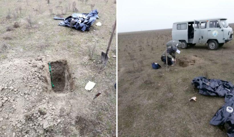 Почвенное обследование по определению фоновых значений содержания нефтепродуктов в почве