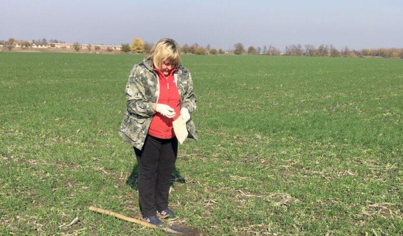 Главный агрохимик сектора МПП Лариса Жаворонкова