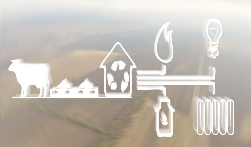 Органическое удобрение - Эффлюент