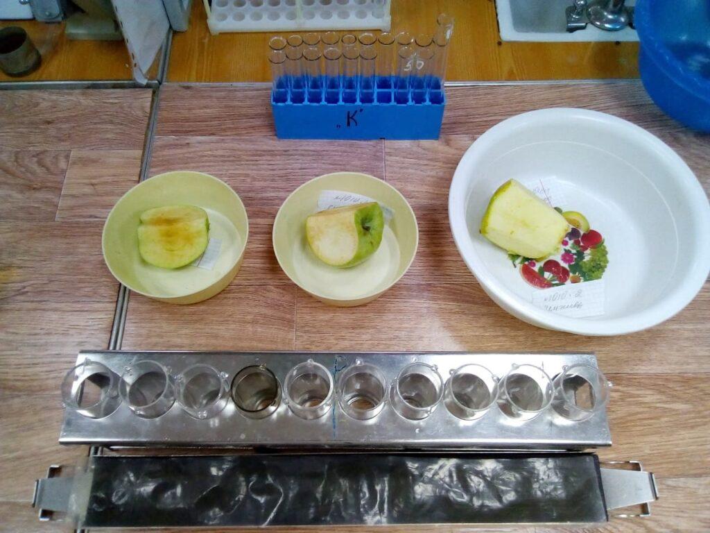 Подготовка проб яблок для определения кальция